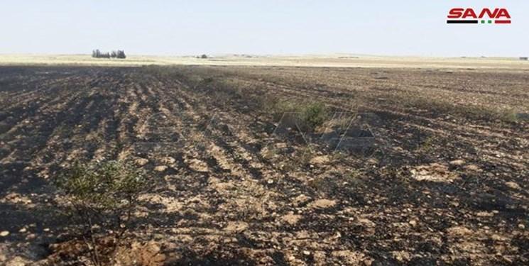 مقام سوری: آمریکایی ها مزارع گندم سوریه را آتش می زنند