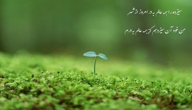 23 شعر سیزده بدر؛ اشعار کوتاه و بلند زیبا و خواندنی