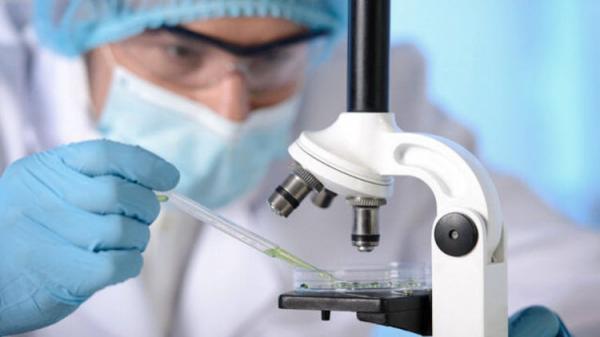 شناسایی داروی ضد پیری در بدن